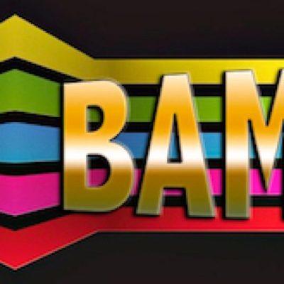 Bamboocha-company-favicon.jpg